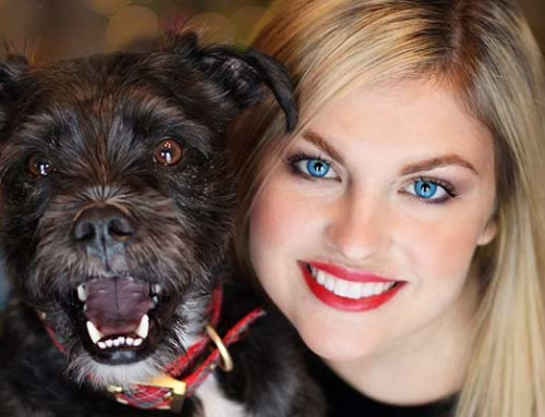 Preventative Health Care Tips For Your Pets